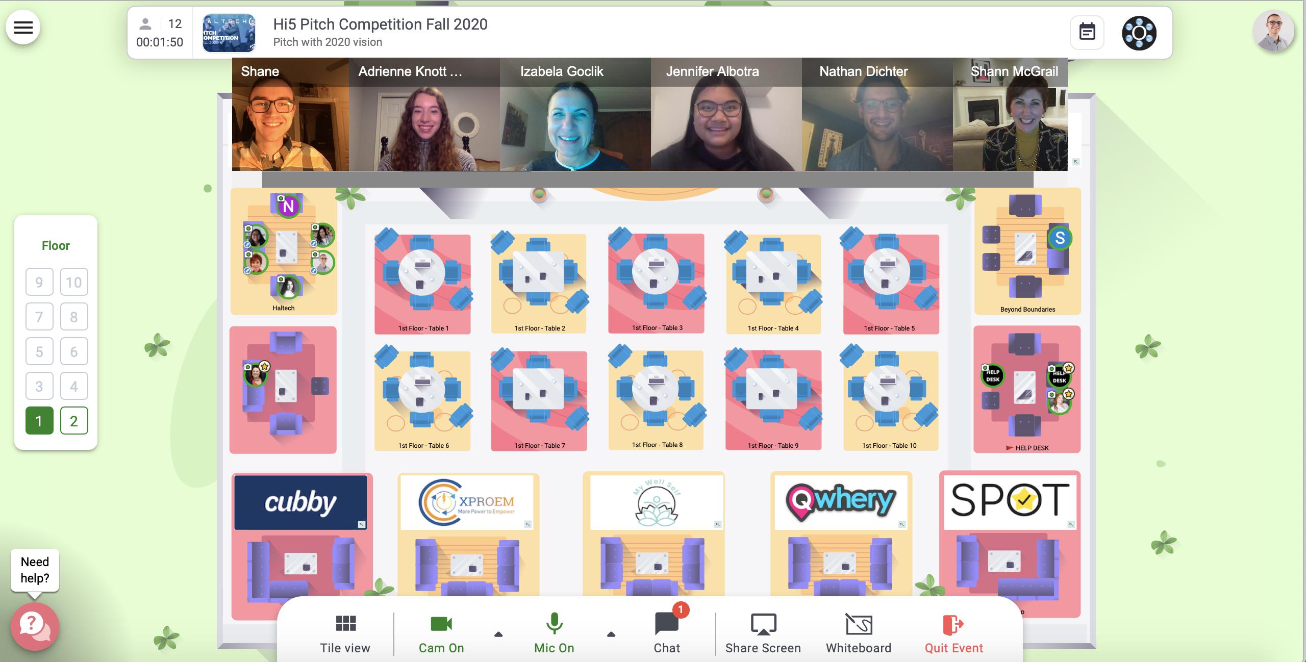 Team Screenshot Hi5 2020