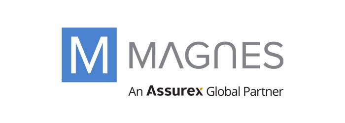 Magnes Group Logo